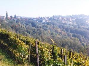 Le joli Piemont