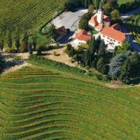 Le vignoble slovène de Jeruzalem Ormož  #slovénie