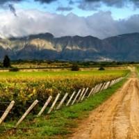 Les vins boliviens font leur entrée au ProWein 2015 #bolivie #amériquedusud #prowein