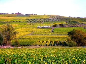 La colline du Bollenberg