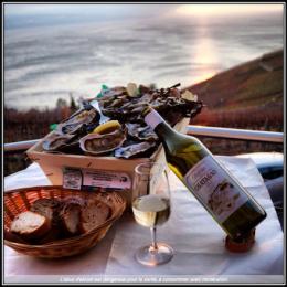 A la découverte des huîtres de Marennes Oléron. #france #seafood#wine