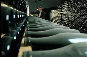Bisol, l'excellence de la terre au verre  #prosecco #cartizze#italie